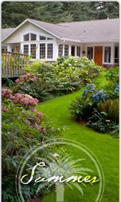summer landscape services